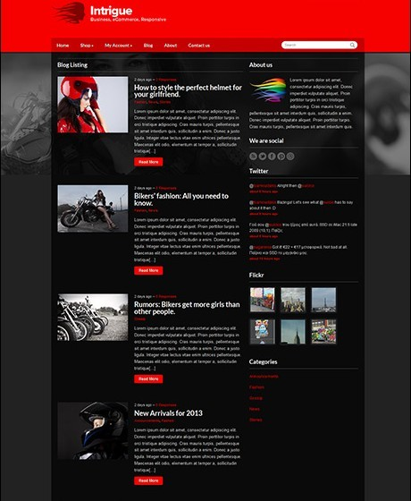 CSSIgniter Intrigue Responsive E-shop Theme For WordPress