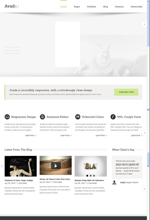Avada Responsive Multi-Purpose WordPress Theme By ThemeFusion