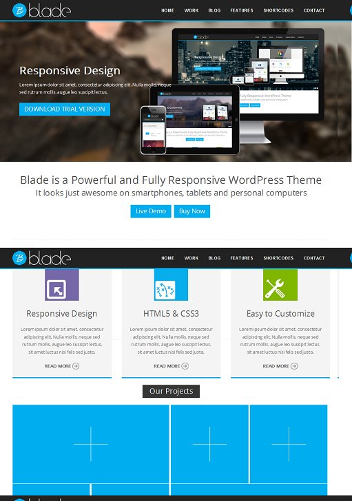 Blade Responsive Business WordPress Theme
