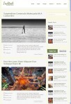 Instinct – Elegant Blog WordPress Theme From MyThemeShop