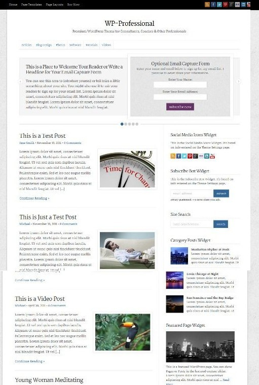 WP-Professional Solostream WordPress Theme For Independent Professionals