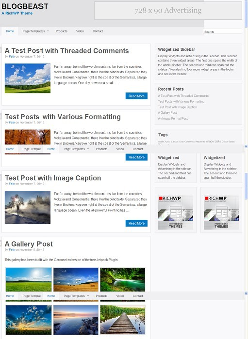RichWP BlogBeast Responsive WordPress Personal Blog Theme