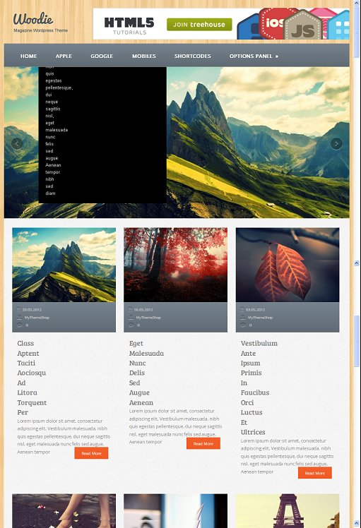 Woodie Multipurpose Responsive WordPress Theme From MyThemeShop