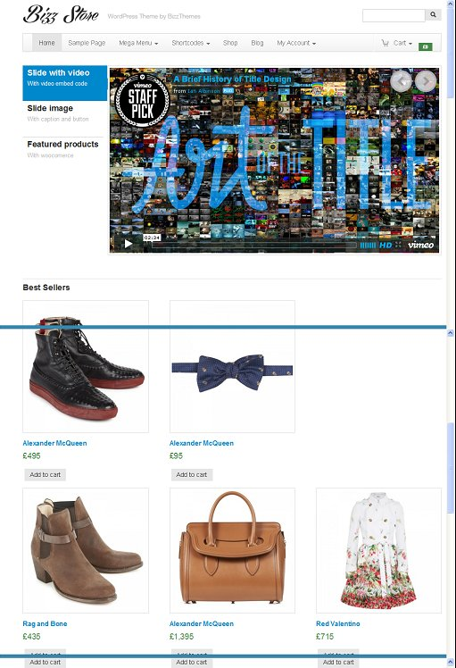 BizzThemes BizzStore WordPress Theme For eCommerce Website