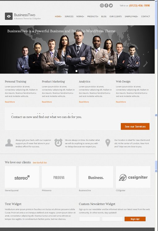 CSSIgniter BusinessTwo Portfolio WordPress Theme