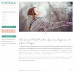 BluChic Emerald WordPress Theme Works With WooCommerce