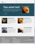 Viva Themes Circles Responsive Business Theme For WordPress