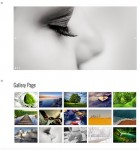 The Gallery Theme – New RichWP Gallery WordPress Theme