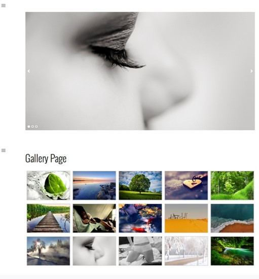 RichWP Gallery WordPress Theme