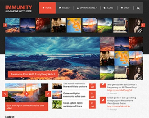 Immunity WordPress Theme : MyThemeShop MultiPurpose Magazine & Blog Theme