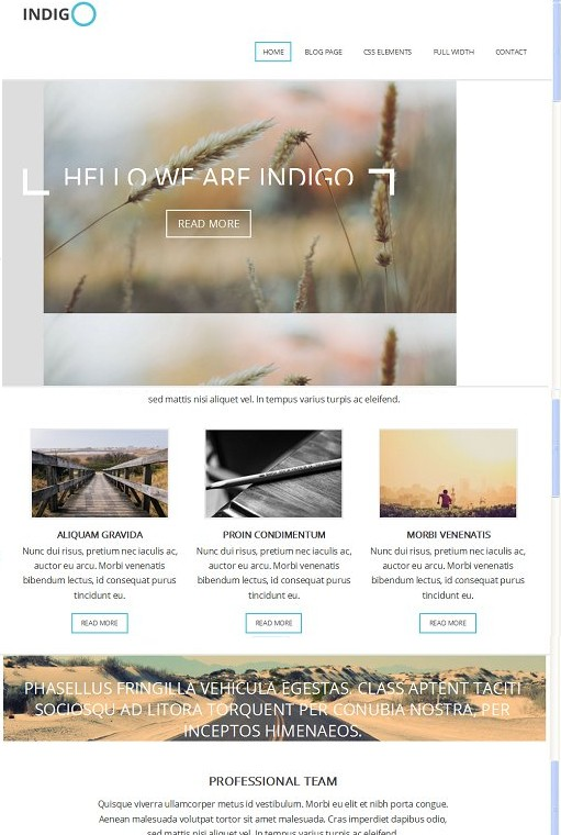 Indigo WordPress Theme - A Viva Themes Multi-purpose Theme