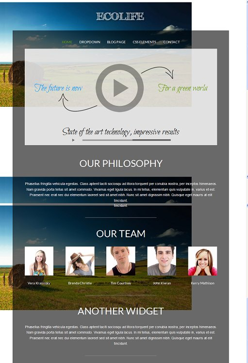 Ecolife WordPress Theme – A VivaThemes Non-profit Theme