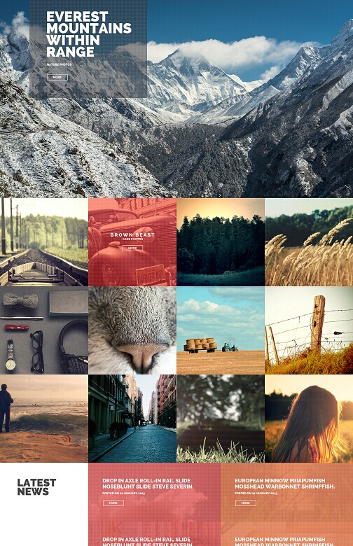 Phototastic WordPress Theme - A Tokokoo Photography Theme