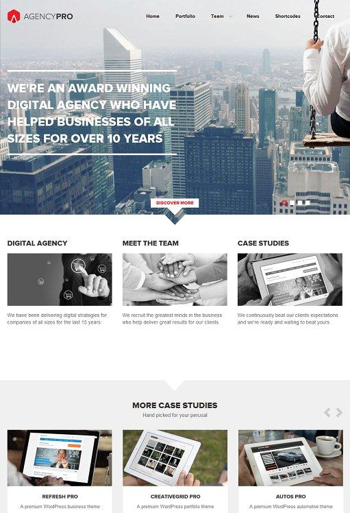 Agency Pro WordPress Theme – A FrogsThemes Business Theme