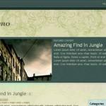 Intaglio Theme – Free Premium WordPress Themes From FlyThemes
