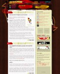 AcosminGRUNGY Premium WordPress Theme