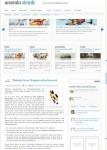 AcosminSIMPLE Premium WordPress Theme By Acosmin