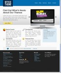 NeatoThemes Office Theme WordPress