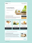 ThemeForest eShop Newsletter Email Template
