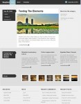 Woothemes Skeptical Free Premium WordPress Theme