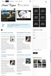 BizzThemes Inuit Types WordPress Theme For Artistic People