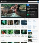 ThemeSnap GoVideo Premium Drupal Video Theme