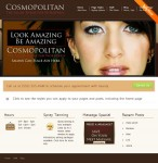 Cosmopolitan WordPress Salon Theme From Aloha Themes