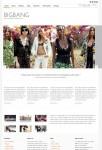 UFO Themes BigBang WordPress Theme For Portfolio Website