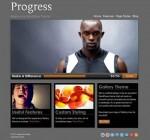Organized Progress Responsive WordPress Theme For Non-profits
