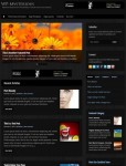 WP-Mysterious Solostream WordPress Theme For Personal Online Magazine
