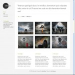 Viva Themes Alternate, Responsive Portfolio Theme For WordPress